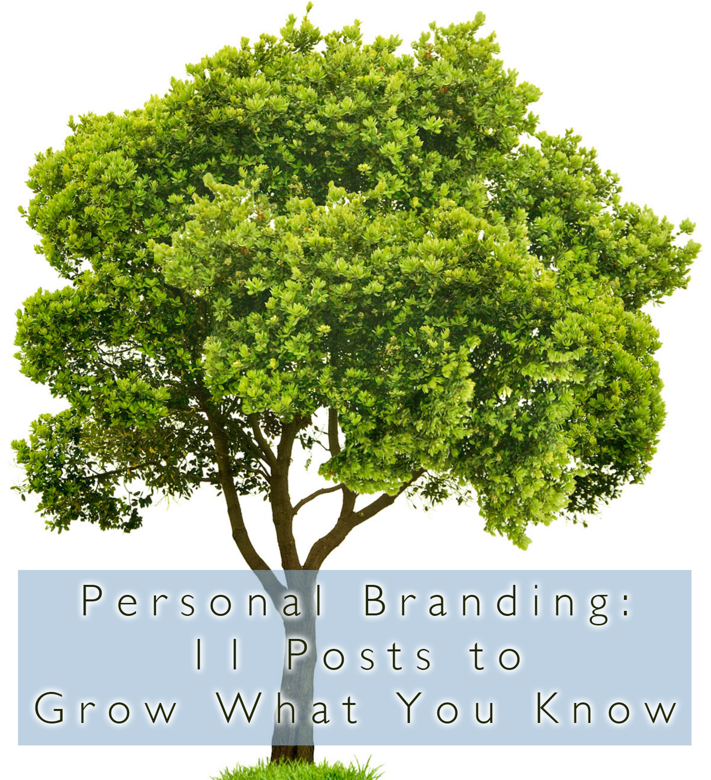 Personal Branding: 11 Posts to Grow What You Know