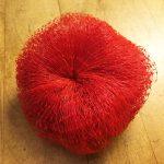 Onion Bag Dish Scrubby